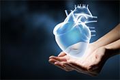 Neue-Kardiologie