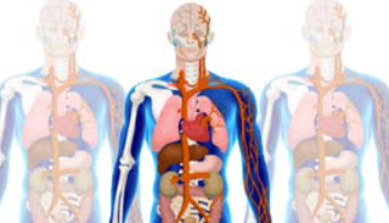 Kliniksuche mit dem Körperkompass